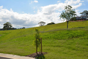 SOLD LOT 65 MOUNT VUE MALENY