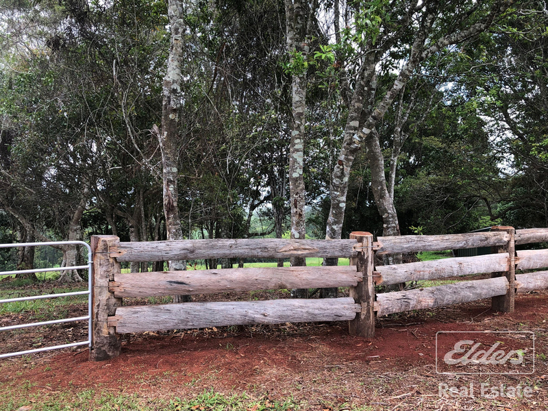 Photo - Malanda QLD 4885 - Image 5