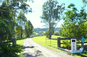 Peace & Seclusion on 25 Acres